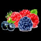 Sabor a Frutas del Bosque