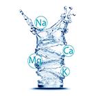 20 tomas que ayudan a recuperar minerales y el equilibrio electrolítico.