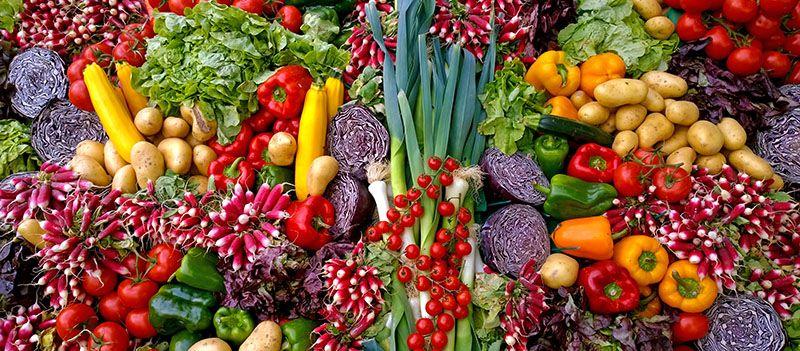 Sabemos de la importancia de los nutrientes en nuestro organismo, pero, ¿y los antinutrientes?